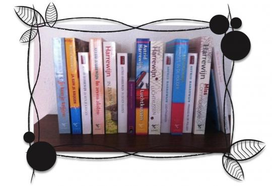 De 1000 boeken van Astrid Harrewijn - Chicklit