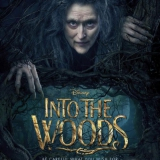 Recensie: Into the woods (BIOS)